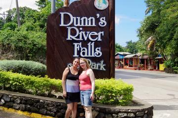 Dunn's River Falls and Fern Gully Day Trip from Kingston