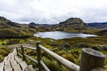 El Cajas National Park Private Tour