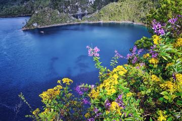 El Chiflón Waterfalls and Montebello Lakes National Park Day Trip
