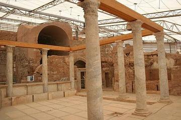 Ephesus and Terrace Houses Private from Kusadasi