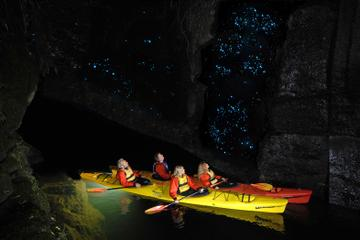 Evening Glow Worm Kayak Tour in Tauranga