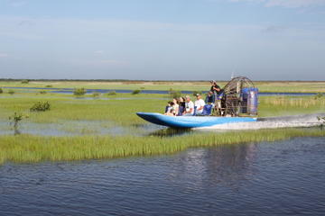 Everglades Airboat Ride and Alligator Show with Transport