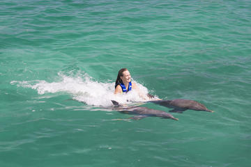 Excellence Dolphin Swim in Punta Cana