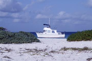 Fishing Trip in Curaçao
