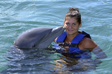 Freeport Dolphin Encounter