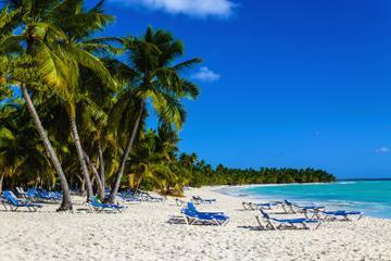 Freeport S Excursion Paradise Cove Beach Snorkeling Tour