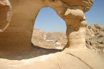 Full-Day Camel Safari to the White Canyon