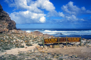 Full-Day Cape Peninsula Sightseeing Tour from Cape Town