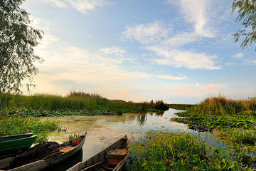 Full-Day Danube Delta Private Tour from Bucharest