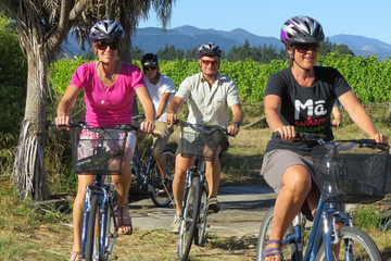 Full-Day Marlborough Wine Region Guided Bike Tour