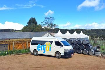 Full-Day Premium Waiheke Wine Tour