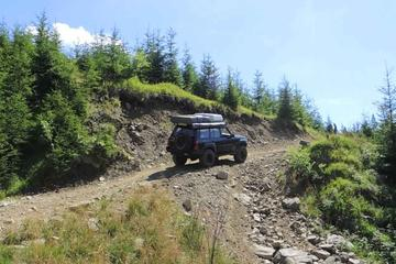 Full-Day Private Tour of the Carpathian Mountains from Bucharest