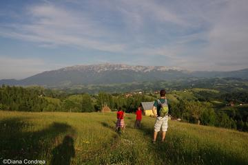 Full-Day Private Walking Tour in the Carpathian Villages from Bucharest