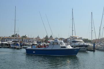 Full-Day Reef or Shark Fishing from Albufeira