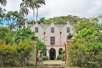 Full-Day Tour Including Harrison's Cave, Bathsheba Beach, St. Nicholas Abbey, Barbados Wildlife Reserve and a Traditional Lunch