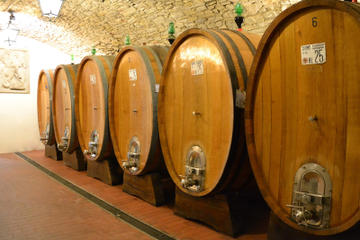 Full-Day Wine Tour from Bologna