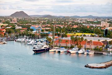 Full Island Tour of Aruba