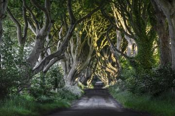 Game of Thrones' and Giant's Causeway Tour from Belfast