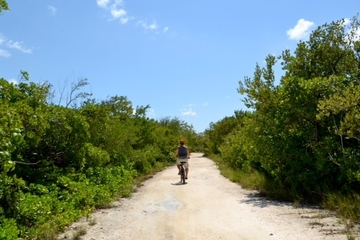 Grand Cayman Shore Excursion: West Bay Bike Tour