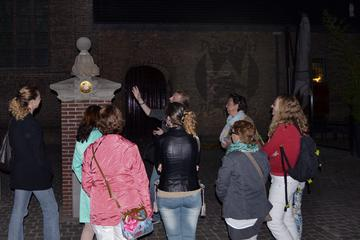 Guided Walking Tour of Mysterious The Hague