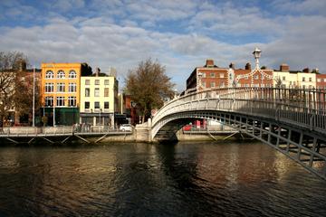 Guinness, Whiskey and Vikings Tour from Dublin