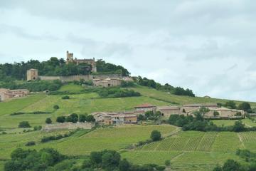 Half-Day Bus Tour of Beaujolais Vineyards from Lyon