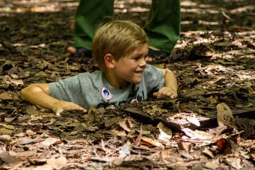 Half Day Cu Chi Tunnels Tour from Ho Chi Minh