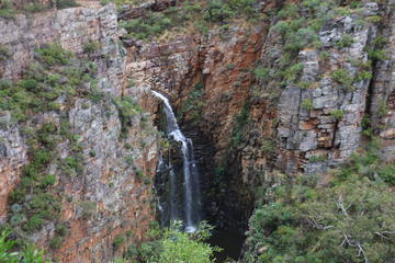 Half-Day Small-Group Morialta Conservation Park Tour from Adelaide