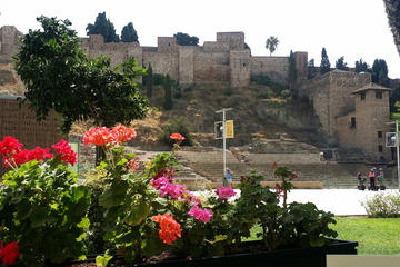 Half Day Tour in the Cultural and Historical Malaga