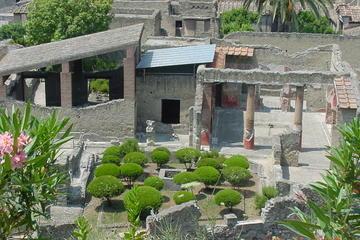 Herculaneum and Mt Vesuvius Excursion from Sorrento
