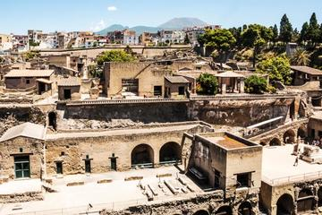 Herculaneum Ruins Private Half-Day Tour