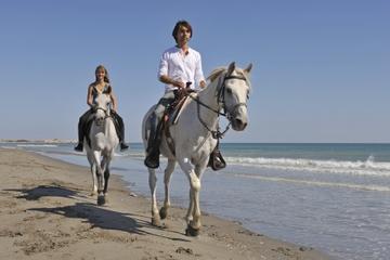 Heritage Beach Horse Ride
