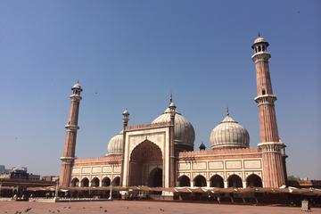 Heritage Day Tour of Old and New Delhi
