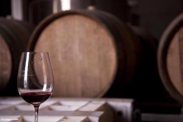 Hidden Wineries of the Uco Valley