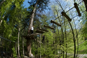 High Ropes Adventure Park Admission in Interlaken