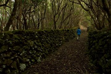 Hiking in the Azores islands