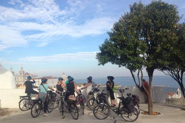 Historic Lisbon: Guided e-Bike Tour