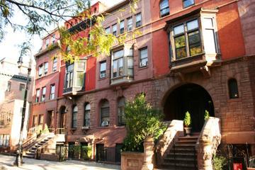 Homes of Harlem Walking Tour with Brunch