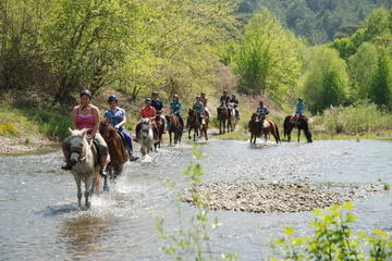 Horse back riding 2-hours in Marmaris