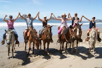 Horse Riding on Patara Beach