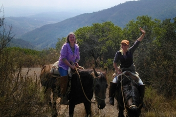 Horseback Riding Adventure in the Chilean Countryside