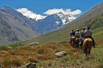 Horseback Riding in the Andes from Santiago