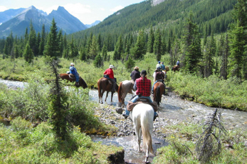 Horseback-Riding Tour in Banff with BBQ Lunch