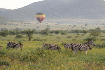 Hot Air Balloon Safari at Pilanesberg National Park