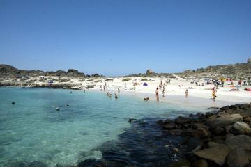 Isla Damas and Punta Choros from La Serena