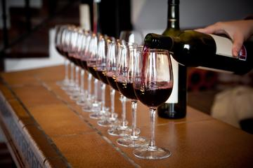 Italian wine tasting experience