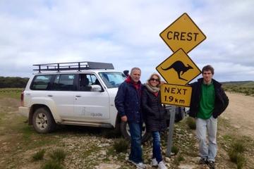 Kangaroo Island 4WD Full-Day Tour - Seal Bay