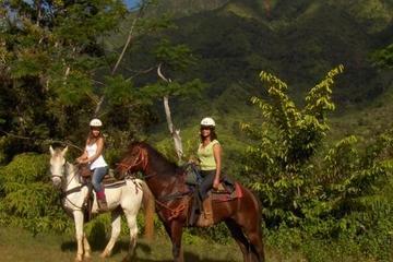 Kauai Horseback-Riding Adventure for Beginners