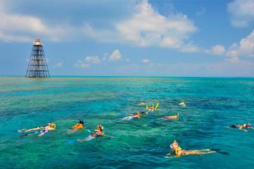 Key West Reef Snorkeling Cruise