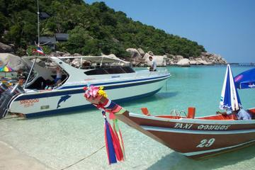 Koh Tao and Koh Nang Yuan Islands Speedboat Day Tour from Koh Samui